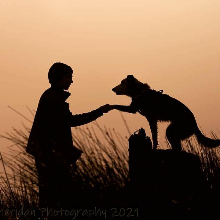 Tara Conway Pet Training