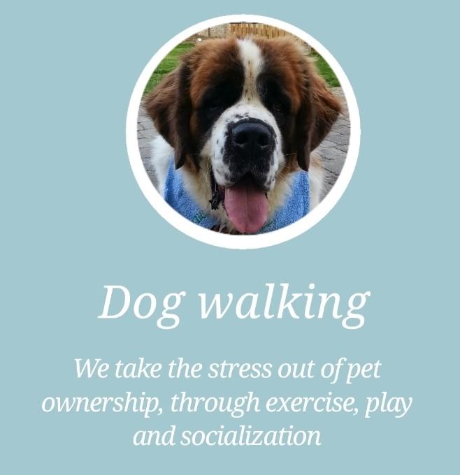 Lucan Dog Walkers