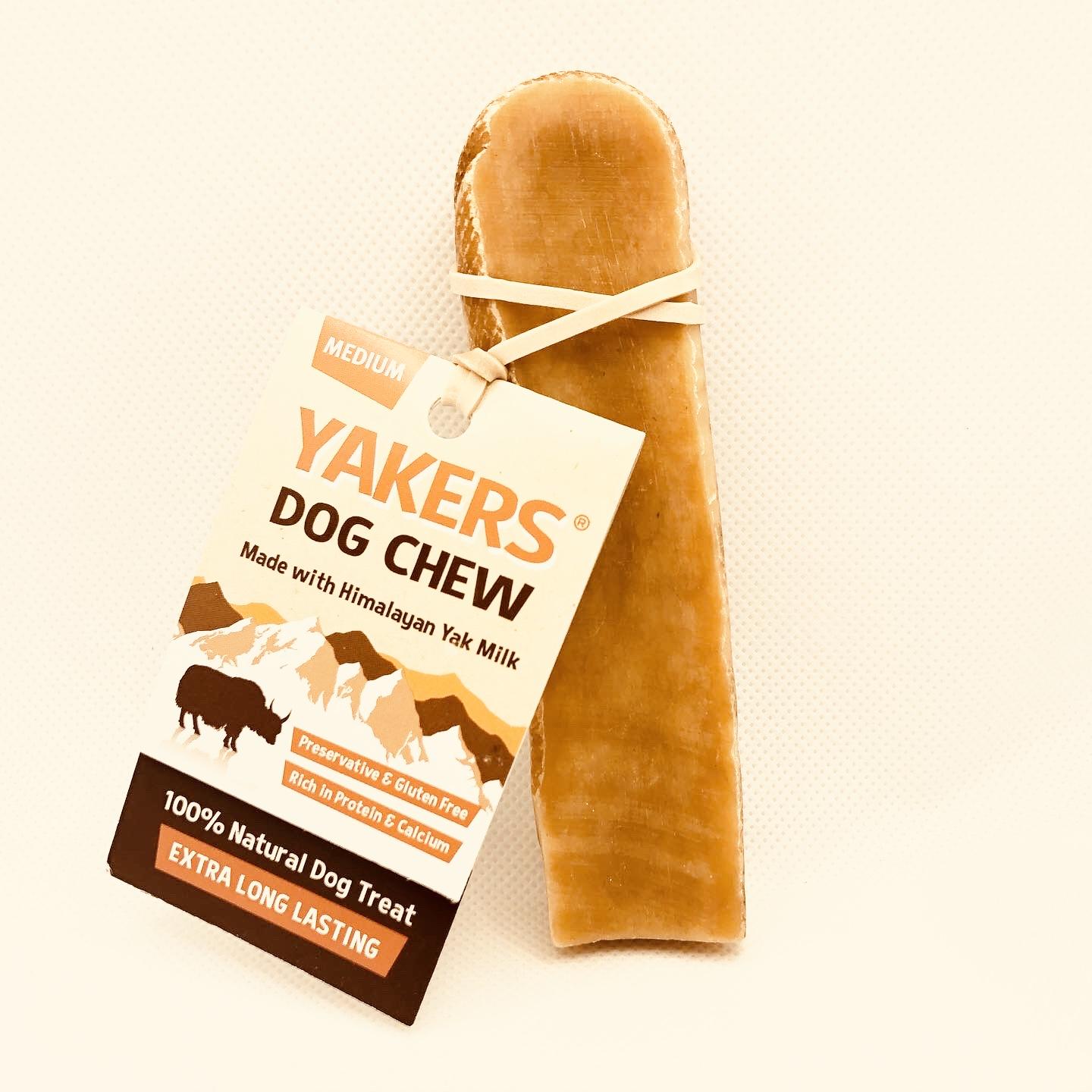 HundDog Boutique